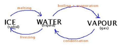 Earth in Crisis - Water Pollution essays